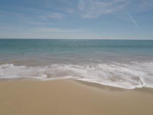 Meia-Praia-Strand-300x225 404 Error Ferienwohnungen Lagos